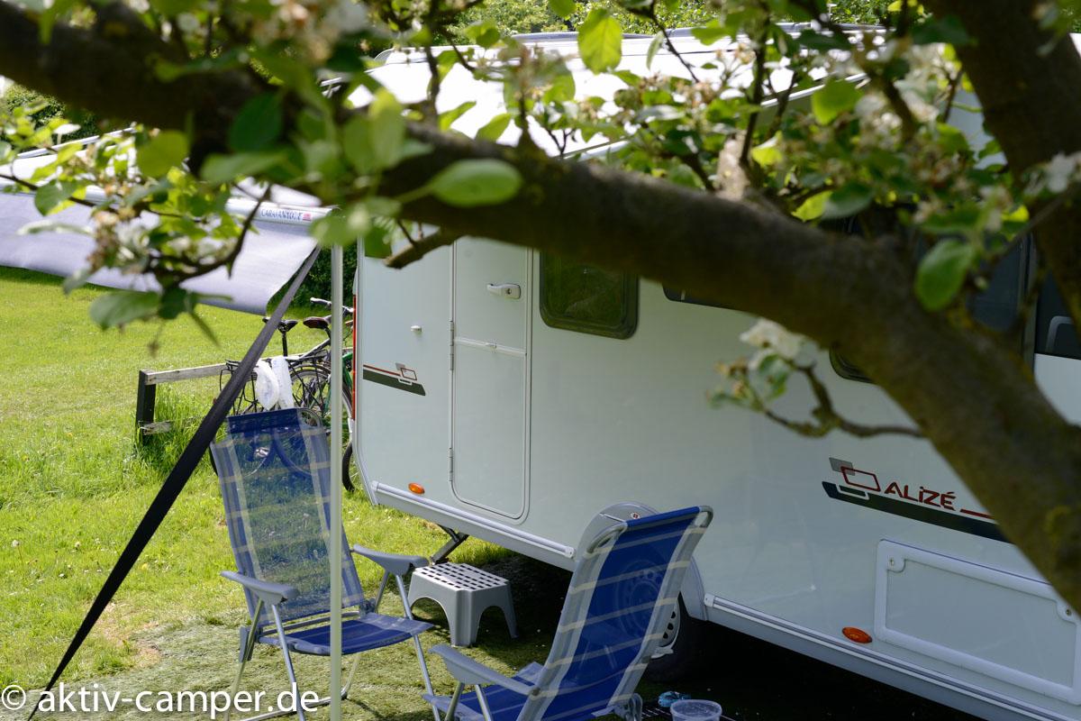 Camping unter Obstbäumen.