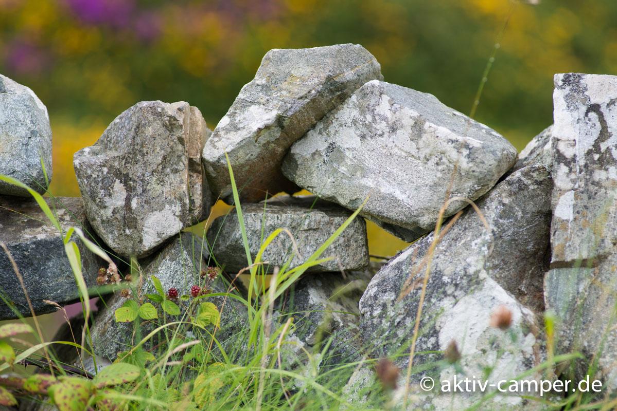 Irland mit dem Camper- Reiseinfo