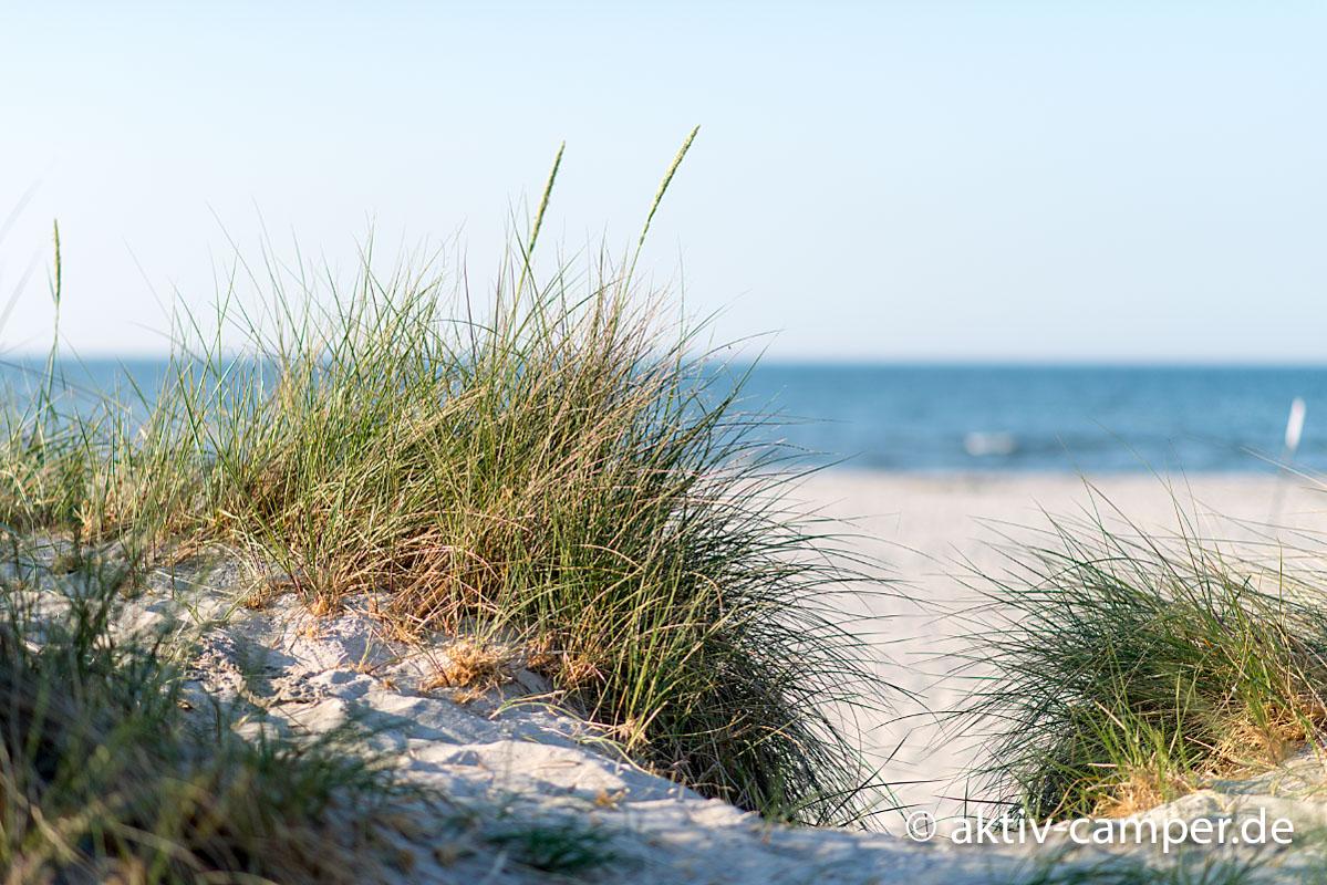 Am Strand von Prerow