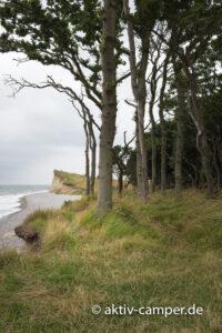 Küste im Nationalpark Langeland