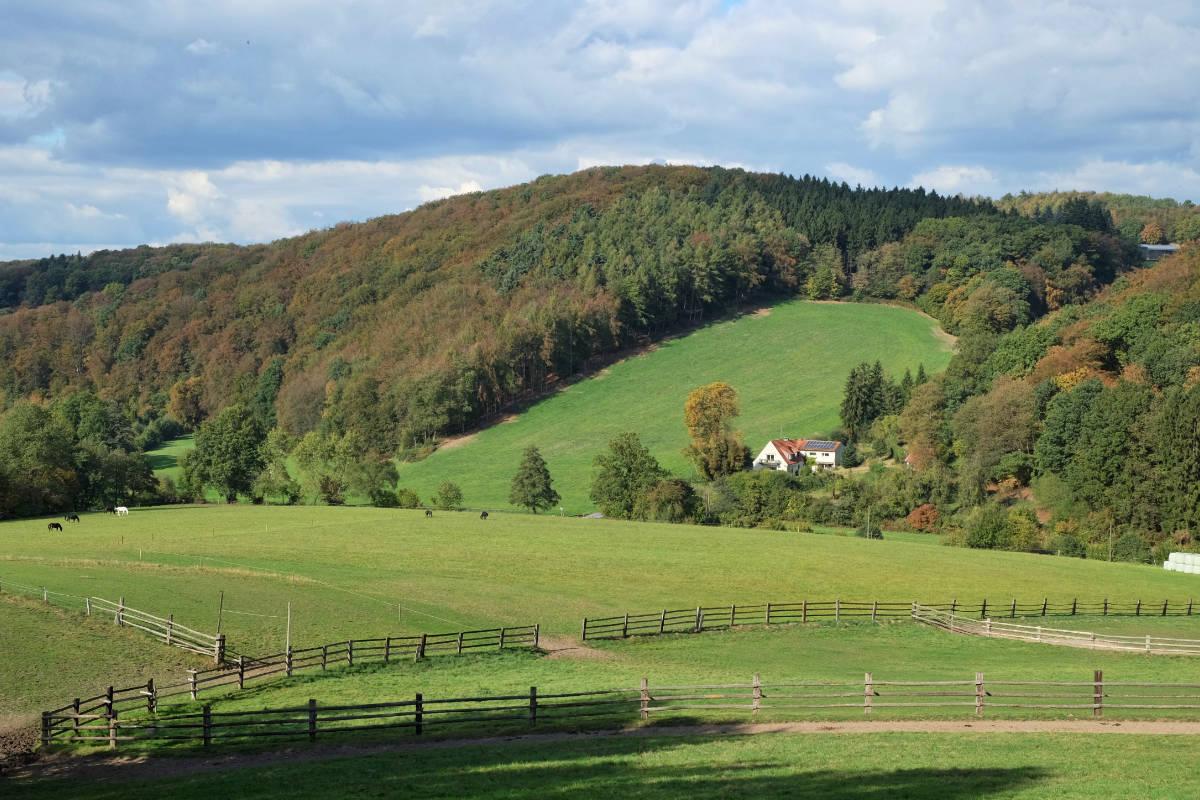 Das südliche Ruhrgebiet-Wandern in der Elfringhauser Schweiz