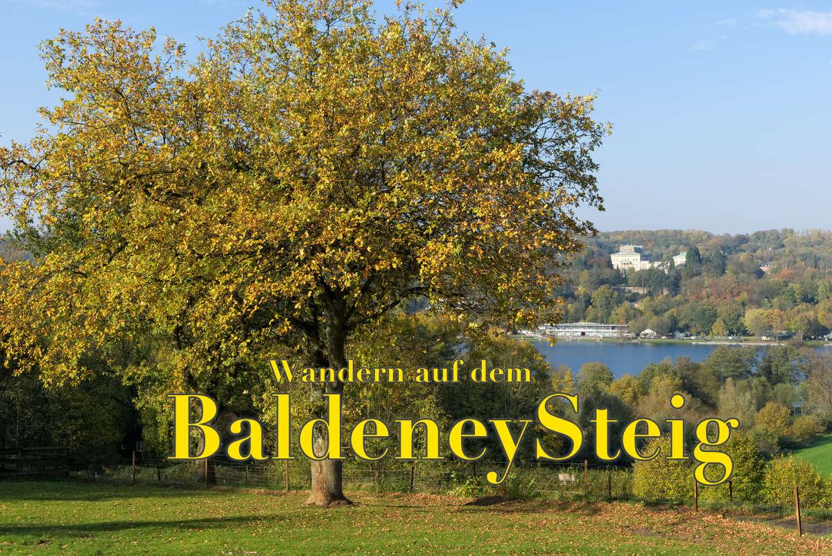 Wandern auf dem Baldeneysteig in Essen