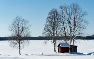 Reisebericht Norrland im Winter Teil II/II