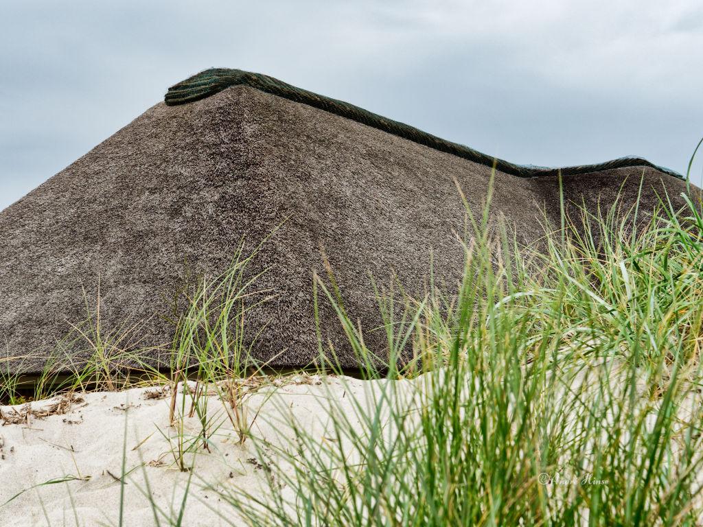 Haus mit Reetdach in den Dünen