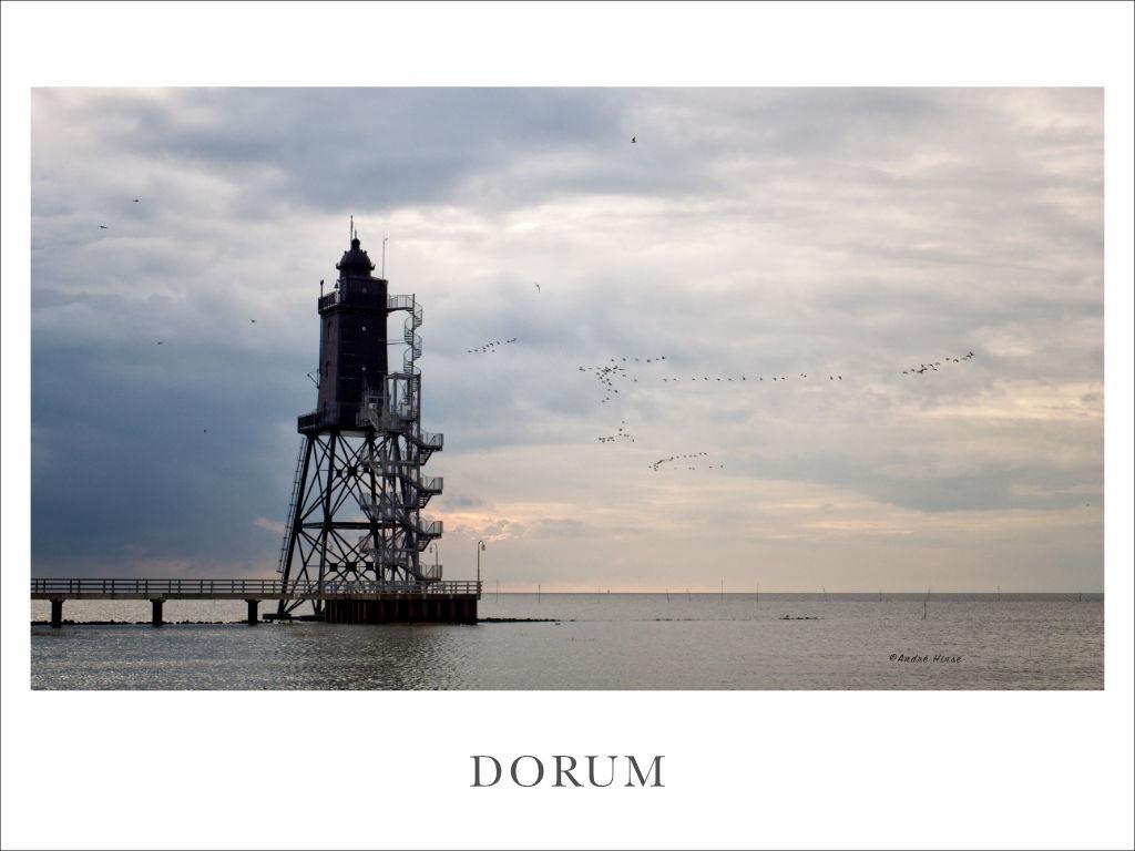 Zugvögel am Leuchtturm bei Dorum