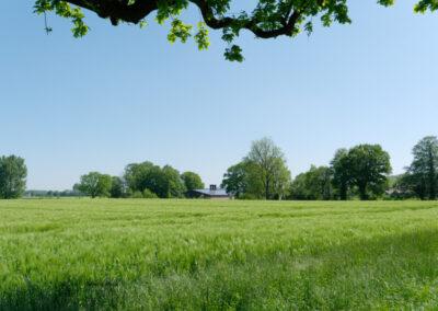 Landschaft bei Haltern