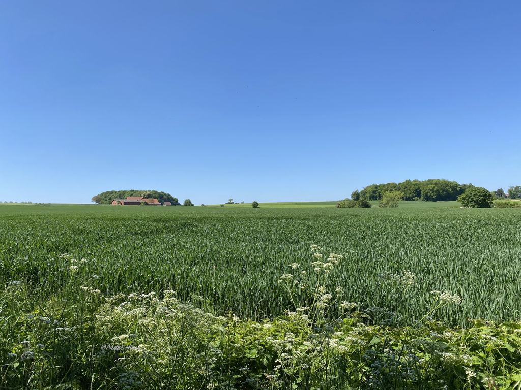 Radtour von Haltern nach Greetsil, hier bei Billerbeck